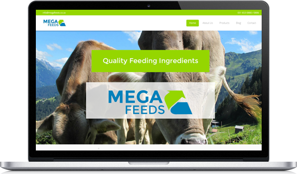 Megafeeds Website - Website by Website Design Studio